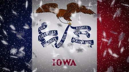 iowa : Iowa flag falling snow, New Year and Christmas background, loop. Stock Footage