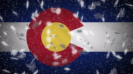 denver : Colorado flag falling snow, New Year and Christmas background, loop. Stock Footage