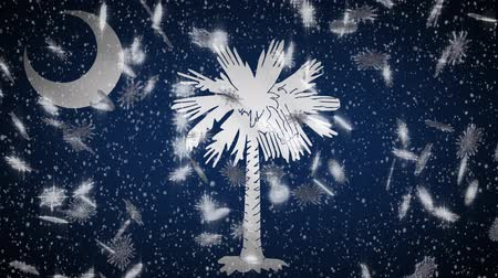 colômbia : South Carolina flag falling snow, New Year and Christmas background, loop.