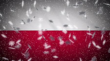 varsavia : Poland flag falling snow loopable, New Year and Christmas background, loop.