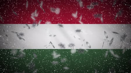 lễ kỷ niệm : Hungary flag falling snow loopable, New Year and Christmas background, loop.