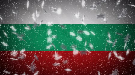 búlgaro : Bulgaria flag falling snow loopable, New Year and Christmas background, loop. Vídeos