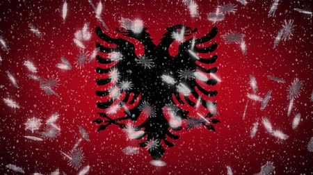 albanie : Albania flag falling snow loopable, New Year and Christmas background, loop. Stockvideo