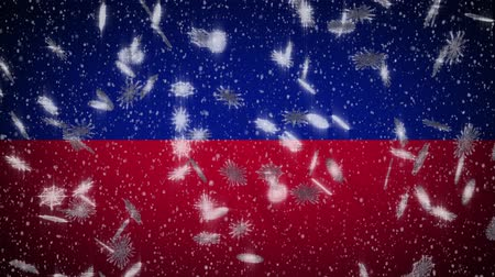 príncipe : Haiti flag falling snow loopable, New Year and Christmas background, loop. Stock Footage