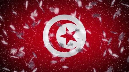tunus : Tunisia flag falling snow loopable, New Year and Christmas background, loop. Stok Video