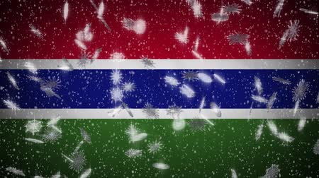 hábil : Gambia flag falling snow loopable, New Year and Christmas background, loop.