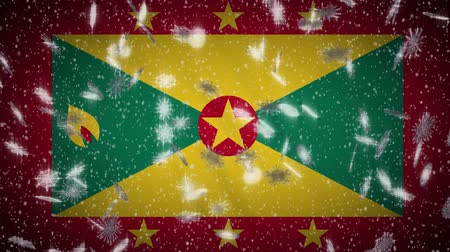 nootmuskaat : Grenada flag falling snow loopable, New Year and Christmas background, loop.