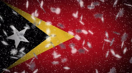 democrático : Timor-Leste - East Timor flag falling snow loopable, New Year and Christmas background, loop. Stock Footage