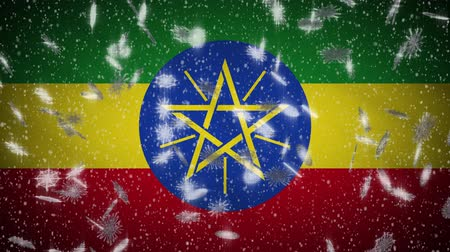 pirotecnia : Ethiopia flag falling snow loopable, New Year and Christmas background, loop. Vídeos