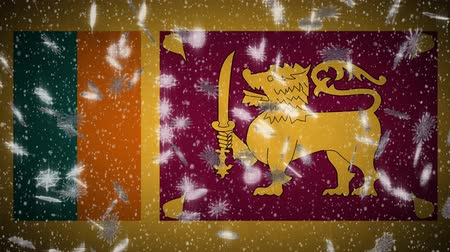 socialist republic : Sri Lanka flag falling snow loopable, New Year and Christmas background, loop. Stock Footage