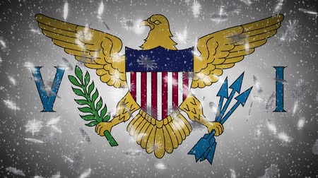 hábil : Virgin Islands US flag falling snow loopable, New Year and Christmas background, loop. Vídeos