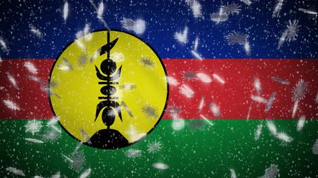 hábil : New Caledonia flag falling snow loopable, New Year and Christmas background, loop.