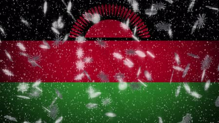 malawi : Malawi flag falling snow loopable, New Year and Christmas background, loop. Stock Footage