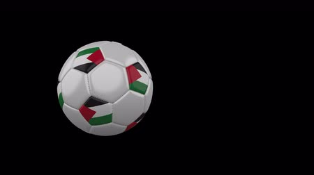Palestine flag on a flying and rotating soccer ball on a transparent background, 4k prores footage with alpha channel Стоковые видеозаписи