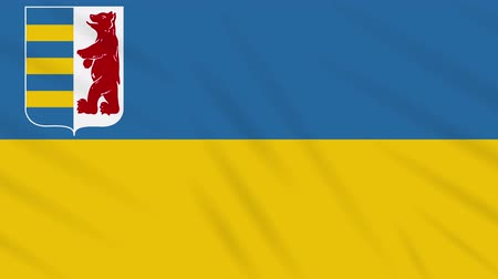 world cup : Zakarpattia Oblast flag waving cloth, ideal for background, loop.