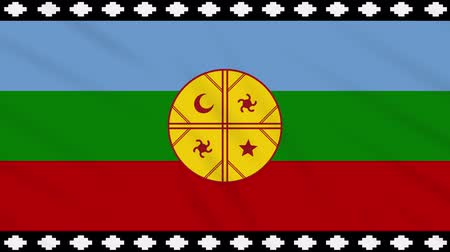 futball : Mapuche flag waving cloth, ideal for background, loop.