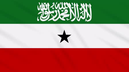 world cup : Somaliland flag waving cloth, ideal for background, loop.