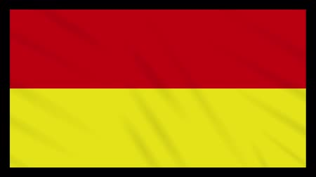 Tamil Eelam bicolor flag waving cloth, ideal for background, loop.