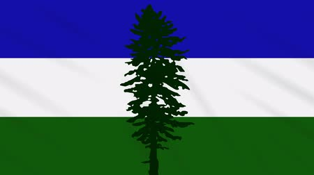 world cup : Cascadia flag waving cloth, ideal for background, loop. Stock Footage