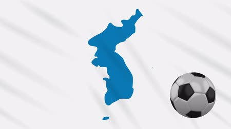 Unification flag of Korea and soccer ball rotates against background of a waving cloth, loop