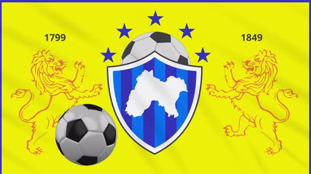 Panjab football flag and soccer ball rotates against background of a waving cloth, loop Стоковые видеозаписи