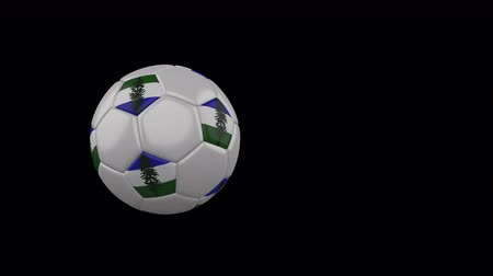 Cascadia flag on a flying and rotating soccer ball on a transparent background, 4k prores footage with alpha channel Стоковые видеозаписи