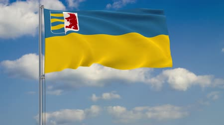 Flag of Zakarpattia Oblast against background of clouds floating on the blue sky Стоковые видеозаписи