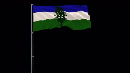 Cascadia isolate flag on a flagpole fluttering in the wind on a transparent background, 3d rendering, prores 4444 4k footage with alpha transparency Стоковые видеозаписи