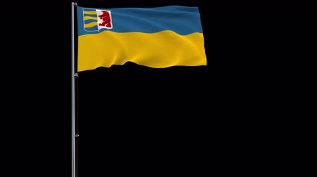 Zakarpattia Oblast isolate flag on a flagpole fluttering in the wind on a transparent background, 3d rendering, prores 4444 4k footage with alpha transparency