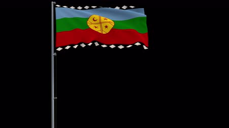 mastro de bandeira : Mapuche isolate flag on a flagpole fluttering in the wind on a transparent background, 3d rendering, prores 4444 4k footage with alpha transparency Vídeos