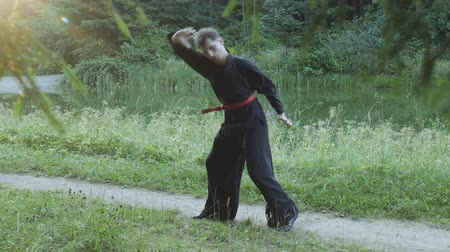 quimono : Trainer kung fu in black kimono doing wheel without hands in park. Slow motion