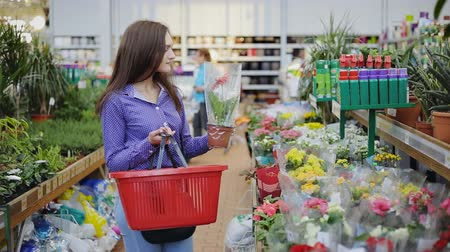átalakítása : Young woman with shopping cart buying flowers at a garden shop