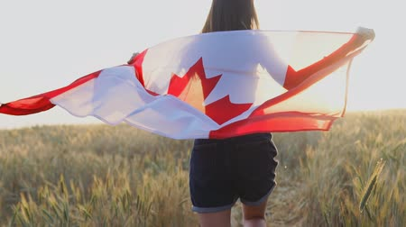 canadense : Young happy canadian girl running with open arms over wheat field and holding Canada flag at sunset. Slow motion Stock Footage