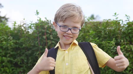 education kids : Portrait of a blond boy with glasses showing thumbs up gesture and having fun in park