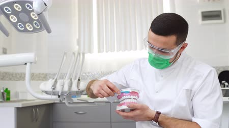 Man dentist with toothbrush teaching brushing teeth on a jaw model Стоковые видеозаписи
