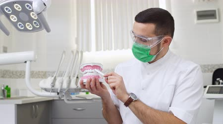 Male dentist holding jaw teeth model and explaining about gum. Health education.