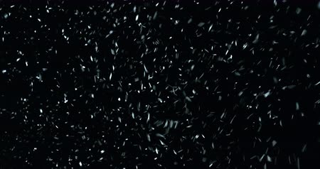 avalanche : VFX Snowstorm on black screen