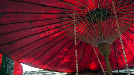 japan : Oriental red umbrella with green leaves and sun shine. Travel to Asia abstract background