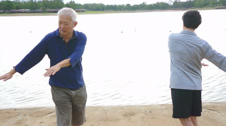 taiji : Video of Asian Senior Elderly couple Practice Taichi, Qi Gong exercise outdoor next to the lake
