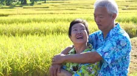 geçen : Asian senior couple hugging in front of rice field. Travel in morning sun