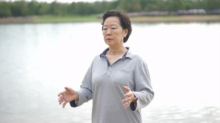 taiji : Video of Asian Senior Elderly Practice Taichi, Qi Gong exercise outdoor next to the lake