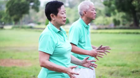 taiji : Video of Asian Senior Elderly couple Practice Taichi, Qi Gong exercise outdoor
