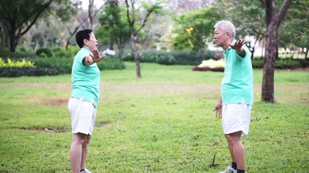 two people talking : Video of Asian Senior Elderly couple Practice Taichi, Qi Gong exercise outdoor in the park. Abstract love health and nature Stock Footage