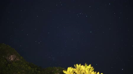 astroloji : Night sky with stars turning space astrophotography time lapse. Mountain and tree foreground