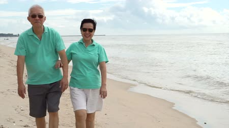 japan : Asian senior couple walking happily by the beach. Well plan retired lifestyle no financial problem Stock Footage