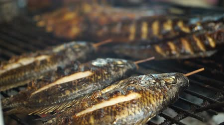 nil : Grill fresh water fish in South East Asia local wet market Stok Video