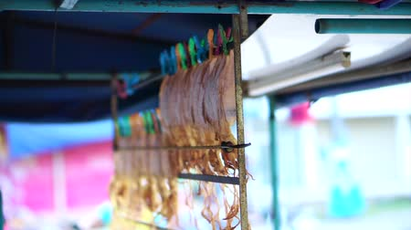 mal cheiroso : Dried squid hanging on rail for selling at Asian street stall market Stock Footage