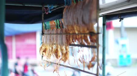 csípés : Dried squid hanging on rail for selling at Asian street stall market Stock mozgókép