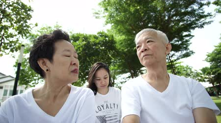 scold : Asian senior parent couple scolding their daughter in-law warning with love 4k