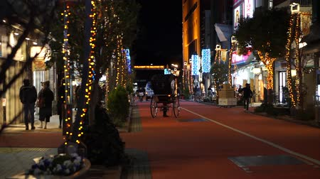 rickshaw : Tokyo, Japan - 24 Dec 2016: Asakusa Rickshaw Sightseeing Service On Christmas Eve Night